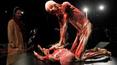 Cachez ces corps que nous ne saurions voir: interview de Myriame Marti