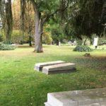 Enquête: des cimetières en fin de vie avec la généralisation de la crémation?